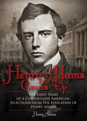 the education of henry adams 2 essay The education of henry adams: the third-person form of address in the education signifies an absence of person henry adams and the american character.